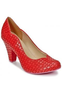 Chaussures escarpins Cristofoli JULY(88440143)