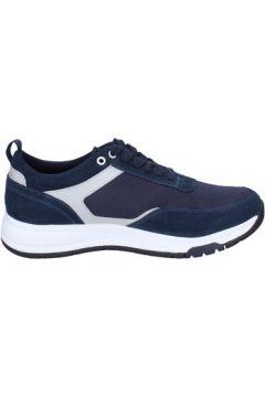 Chaussures Lumberjack sneakers bleu daim textile BT708(115442893)
