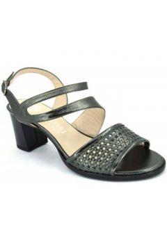 Sandales Dansi 3731(88473207)