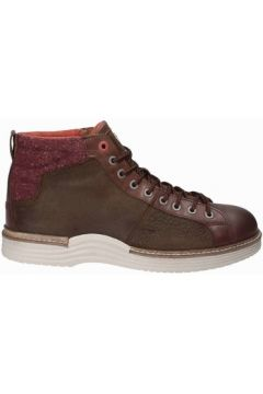 Boots Napapijri 15841171(115663309)