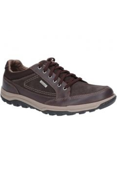 Chaussures Rockport Trail Technique Waterproof Oxford(98491695)