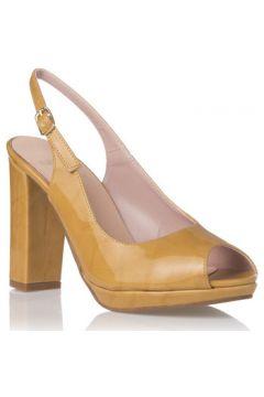 Chaussures escarpins Zapp 5622(115607039)
