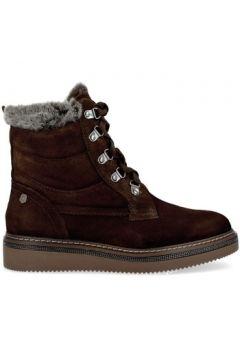 Boots Carmela 66415 Botines de Mujer(115428486)