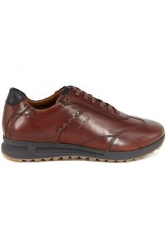 Chaussures Josef Seibel THADDEUS-09 COGNAC(127999866)