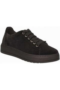 Chaussures Grunland SC3670(115663455)