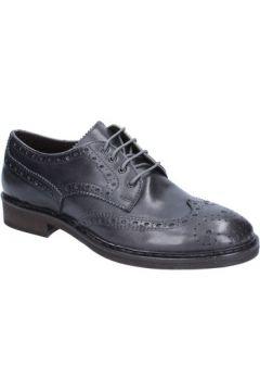 Chaussures Cesare Maurizi élégantes gris cuir BX504(115442567)