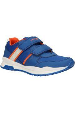 Chaussures enfant Geox J925DA 054FU J CORIDAN(101617951)