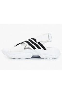 adidas Originals AD093AWIXTV1(115341972)