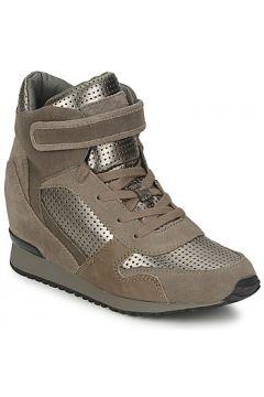 Chaussures Ash DRUM(115384608)