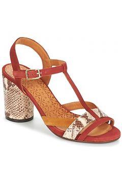 Sandales Chie Mihara UJO(115391651)