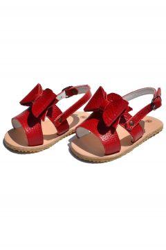 Ayax Fiyonk Bebek Sandalet Kırmızı Cv-311(117603154)