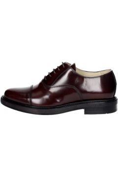 Chaussures Hudson 904(115569772)