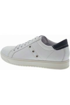 Chaussures Igi co 5718000(115594267)