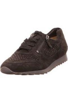 Sneakers Hassia grau(117070579)