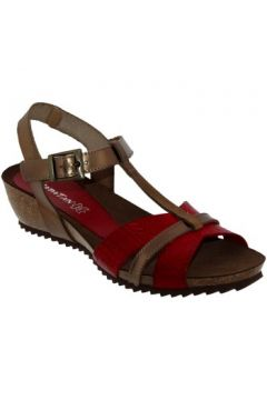 Sandales Xapatan 5441(115584990)