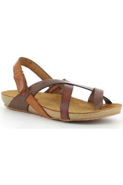 Sandales Yokono IBIZA 718 marrón(127951650)