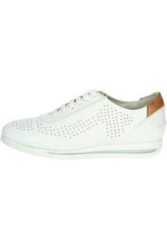 Chaussures Pregunta PIA7262 001(127911805)