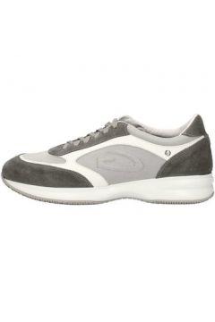 Chaussures Alberto Guardiani SU68361C(88593425)