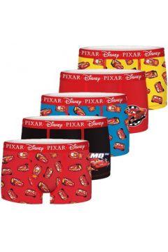 Boxers Disney Lot de 5 Boxers coton petit garçon(127962047)