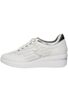 Chaussures Gattinoni PENDE0884WR(115631657)