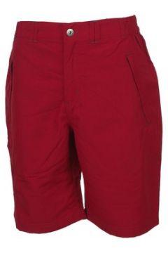 Short Regatta Leesville red short(127854581)