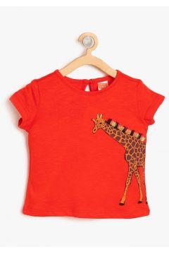 Koton T-Shirt(113959026)