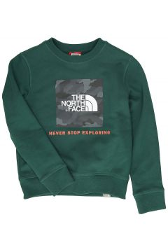 THE NORTH FACE Box Crew Sweater groen(97116398)