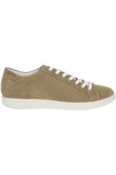 Chaussures Igi co 7676500(115594313)