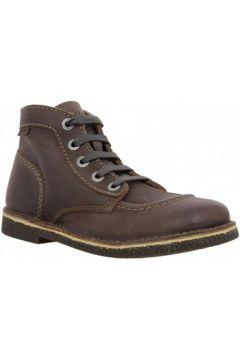 Boots Kickers Legendik box Femme Marron(98746372)