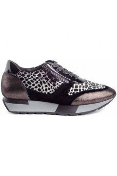 Chaussures Stephen Allen 2076-C2(127987615)