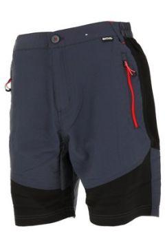Short Regatta Sungari grey/blk short(127854786)