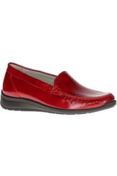 Loafers(116492430)