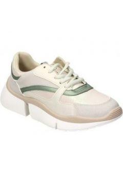 Chaussures Paredes CS19514(127984504)