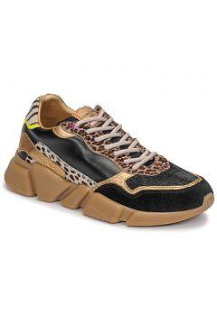 Chaussures Serafini OREGON(127917500)