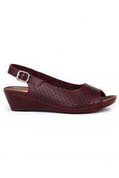 Jasmine Bordo Kadın Sandalet(105256863)