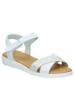 Chaussures enfant Tarke 1203(101590762)
