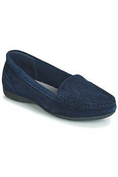 Chaussures Wildflower STEFANI(115414323)