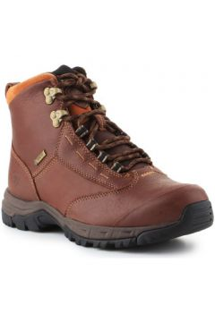 Boots Ariat Berwick lace GTX Insulated 10016298(101595162)