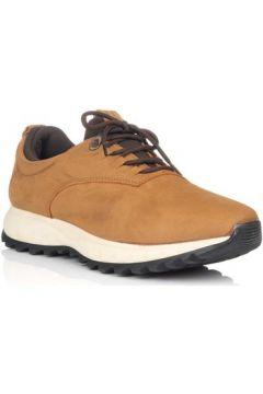 Chaussures Alex 4099(101697461)