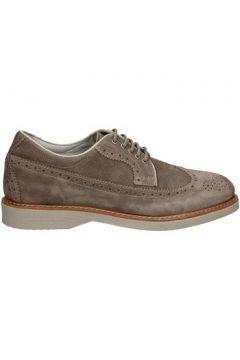 Chaussures Nero Giardini P704971U(115643796)
