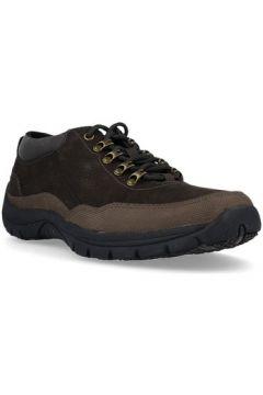 Chaussures Hush puppies 672220 Bels Zapatos con Cordones de Hombre(127930351)