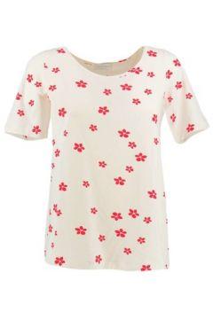 T-shirt Gran Sasso 60228 84805(115589567)
