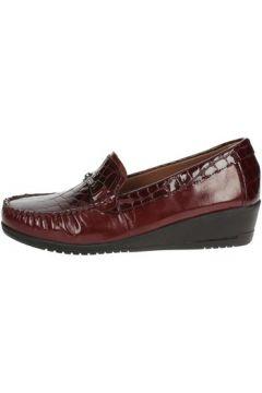 Chaussures Sintonia CS2007-4(115571369)
