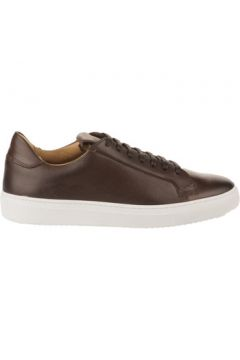 Chaussures First Collective Baskets homme - - Marron fonce - 40(127984684)