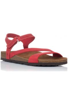 Sandales Bio 7219(127971957)