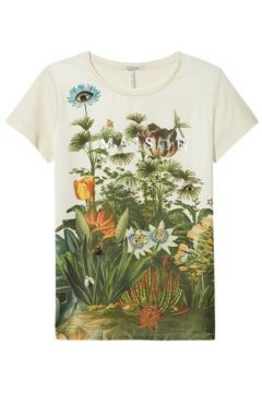 T-shirt Scotch Soda -(115438241)