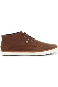 Boots Faguo Wattle(115562804)