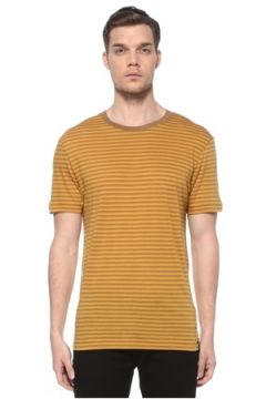 Scotch & Soda Erkek Hardal Çizgili T-shirt Sarı S EU(116665583)