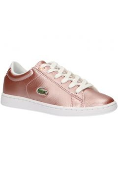 Chaussures enfant Lacoste 37SUC0002 CARNABY(115582418)