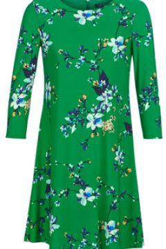 Robe Lauren Ralph Lauren FLORAL PRINT-3/4 SLEEVE-JERSEY DAY DRESS(115409696)